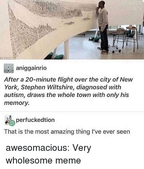 Wholesome Meme: aniggainrio  After a 20-minute flight over the city of New  York, Stephen Wiltshire, diagnosed with  autism, draws the whole town with only his  memory.  erfuckedtion  That is the most amazing thing I've ever seen awesomacious:  Very wholesome meme
