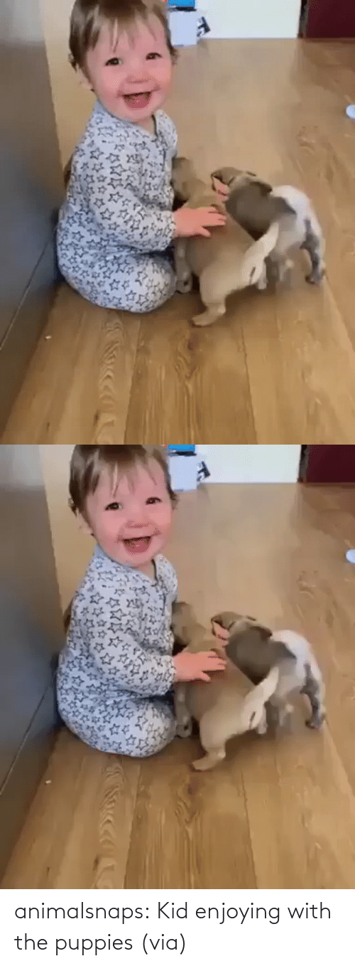 With: animalsnaps:  Kid enjoying with the puppies(via)