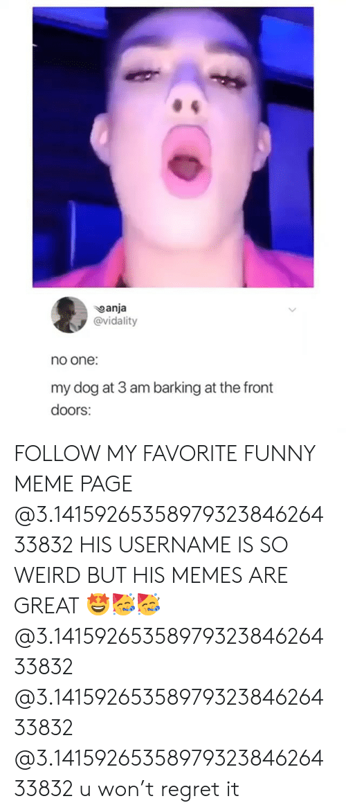 Funny, Meme, and Memes: anja  @vidality  no one:  my dog at 3 am barking at the front  doors: FOLLOW MY FAVORITE FUNNY MEME PAGE @3.1415926535897932384626433832 HIS USERNAME IS SO WEIRD BUT HIS MEMES ARE GREAT 🤩🥳🥳 @3.1415926535897932384626433832 @3.1415926535897932384626433832 @3.1415926535897932384626433832 u won't regret it