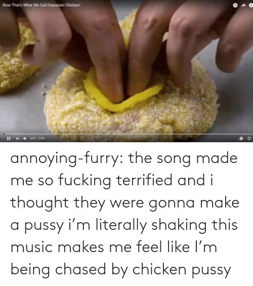 feel like: annoying-furry: the song made me so fucking terrified and i thought they were gonna make a pussy i'm literally shaking this music makes me feel like I'm being chased by chicken pussy