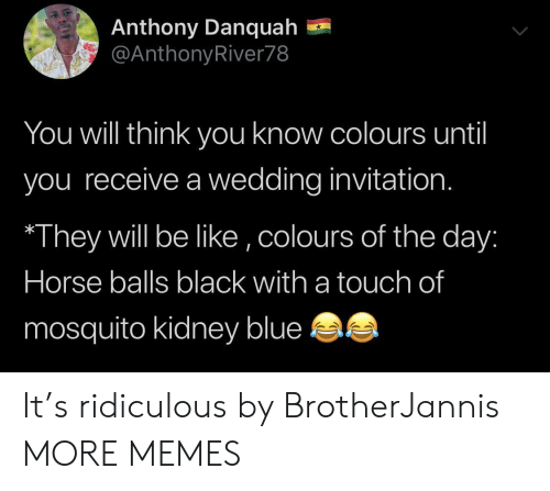 Colours: Anthony Danquah  @AnthonyRiver78  You will think yoOu know colours until  you receive a wedding invitation.  They will be like ,colours of the day:  Horse balls black with a touch of  mosquito kidney blue It's ridiculous by BrotherJannis MORE MEMES