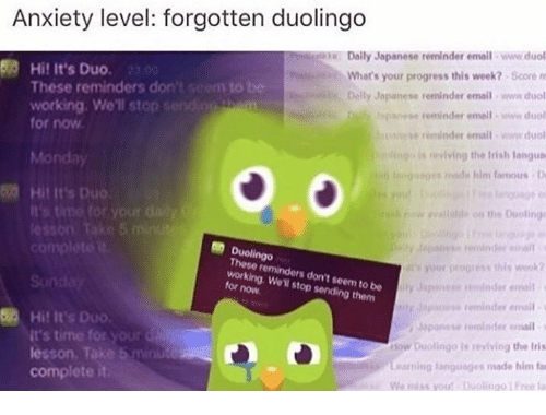 Seemes: Anxiety level: forgotten duolingo  Daily Japanese reminder email www.duol  What's your progress this week?- Score m  Dally Jopanese reminder email www duol  paesereminder email www duol  e reminder emait ww.duol  is eviving the Irish langua  50 Hi! It's Duo.  to be  These reminders don't  working. We'll stop  for now  Monday  ges sde him famous  Hil It's Duo  on the Doolings  It's  Duolingo  These reminders don't seem to be  working. We'll stop sending them  for now  yor progress this wek  Japnese dnder eall  Sapase remind email  Jopanese derail  ow Diolingo is reviving the Irits  Learning languages made him fat  We miss yout olingo Fre l  3  Hit It's Duo  It's time for yourd  lesson. Take 5 minude  complete it