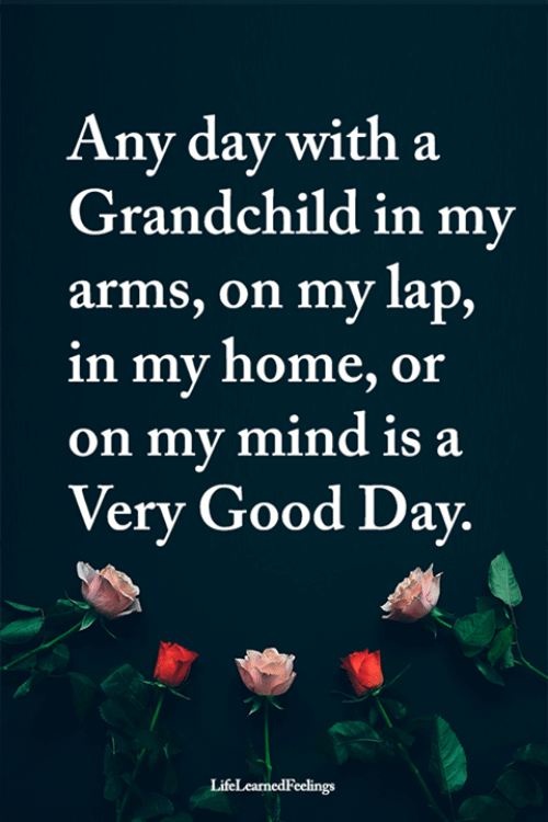 Memes, Good, and Home: Any day with a  Grandchild in my  arms, on my lap,  in my home, or  on my mind is a  Very Good Day.  LifeLearnedFeelings