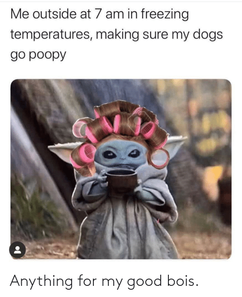 Good: Anything for my good bois.