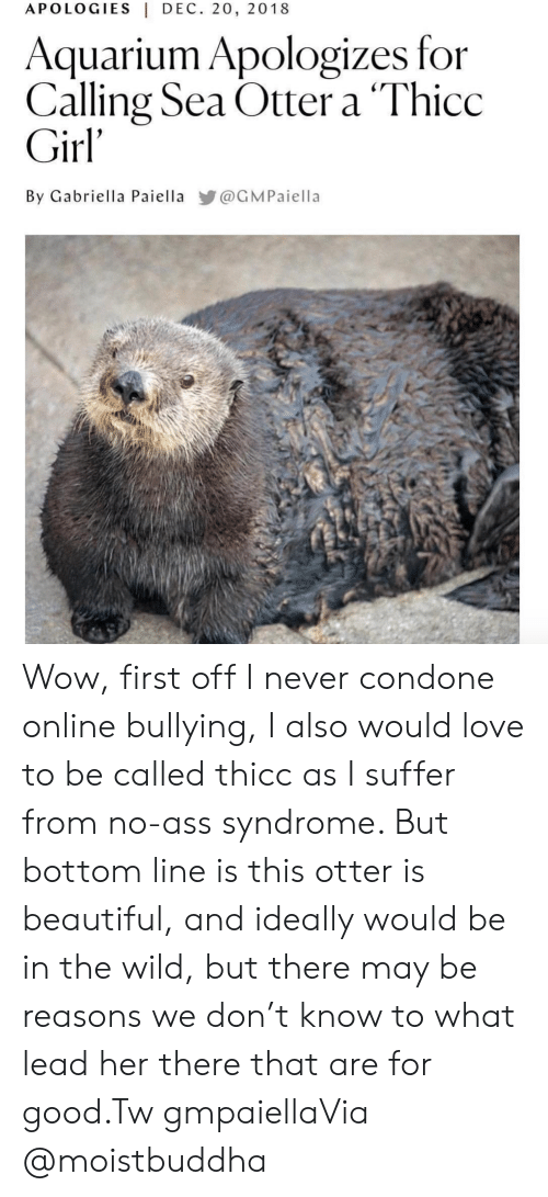 Ass, Beautiful, and Instagram: APOLOGIES DEC. 20, 2018  Aquarium Apologizes for  Calling Sea Otter a 'Thicc  Girl'  By Gabriella Paiella @GMPaiella Wow, first off I never condone online bullying, I also would love to be called thicc as I suffer from no-ass syndrome. But bottom line is this otter is beautiful, and ideally would be in the wild, but there may be reasons we don't know to what lead her there that are for good.Tw gmpaiellaVia @moistbuddha