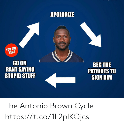 Apologize: APOLOGIZE  YOU ARE  HERE  GO ON  RANT SAYING  STUPID STUFF  BEG THE  PATRIOTS TO  SIGN HIM The Antonio Brown Cycle https://t.co/1L2pIKOjcs
