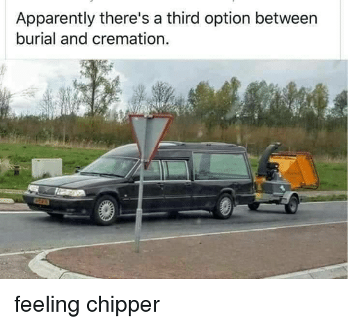 Apparently, Burial, and Cremation: Apparently there's a third option between  burial and cremation feeling chipper