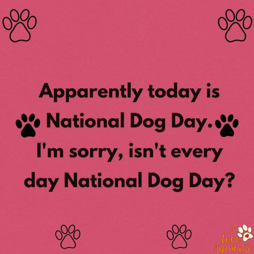 Animals, Apparently, and Love: Apparently today is  National Dog Day.  I'm sorry, isn't every  day National Dog Day?  Love  Animals