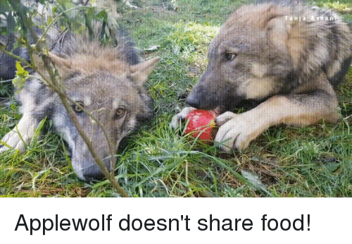 Share Food: Applewolf doesn't share food!