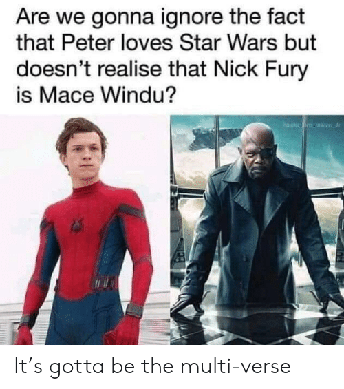 Mace Windu, Star Wars, and Nick: Are we gonna ignore the fact  that Peter loves Star Wars but  doesn't realise that Nick Fury  is Mace Windu? It's gotta be the multi-verse