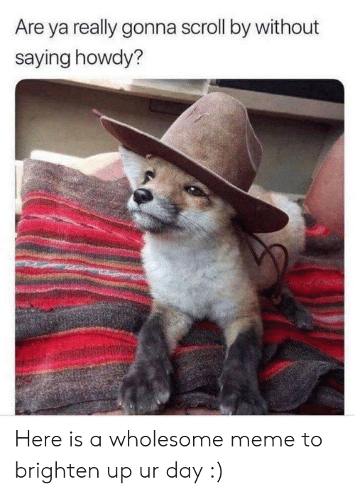 Wholesome Meme: Are ya really gonna scroll by without  saying howdy? Here is a wholesome meme to brighten up ur day :)