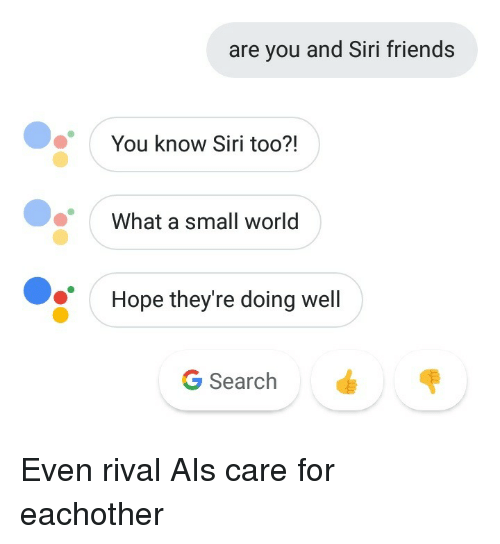 ais: are you and Siri friends  You know Siri too?!  What a small world  Hope they're doing well  G Search Even rival AIs care for eachother