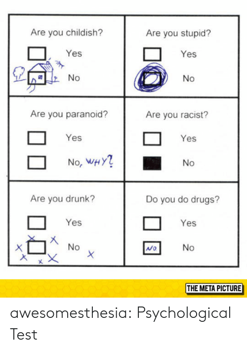 Childish: Are you childish?  Are you stupid?  Yes  Yes  Are you paranoid?  Are you racist?  Yes  Yes  No, WHY  No  Are you drunk?  Do you do drugs?  Yes  Yes  Mo  THE META PICTURE awesomesthesia:  Psychological Test