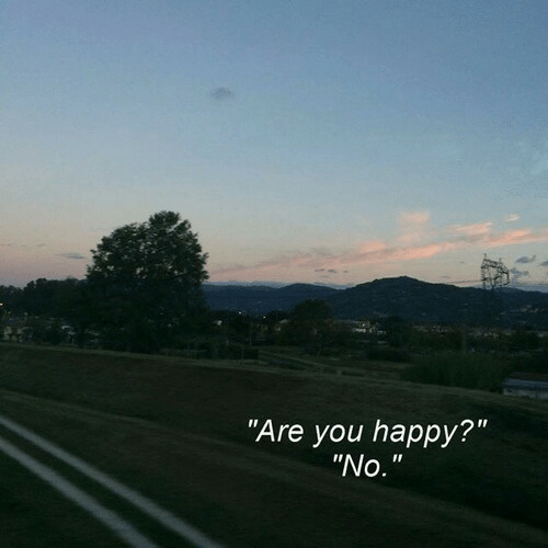 """Happy, You, and Are You: Are you happy?""""  """"No."""""""