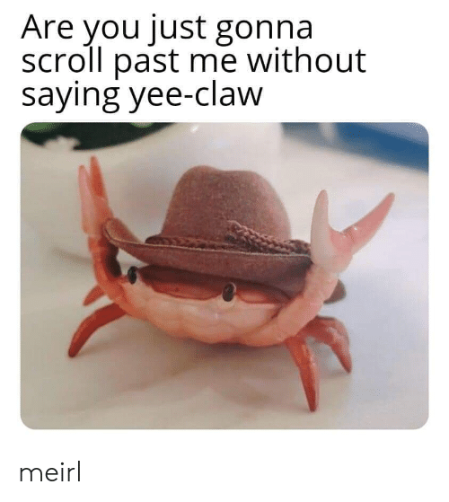 Yee, MeIRL, and You: Are you just gonna  scroll past me without  saying yee-claw meirl