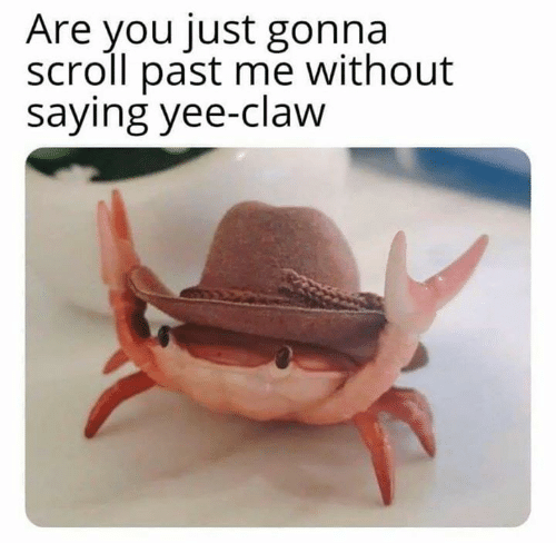 Memes, Yee, and 🤖: Are you just gonna  scroll past me without  saying yee-claw