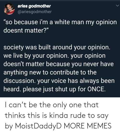 """shut: aries godmother  @ariesgodmother  """"so because i'm a white man my opinion  doesnt matter?""""  society was built around your opinion.  we live by your opinion. your opinion  doesn't matter because you never have  anything new to contribute to the  discussion. your voice has always been  heard. please just shut up for ONCE. I can't be the only one that thinks this is kinda rude to say by MoistDaddyD MORE MEMES"""