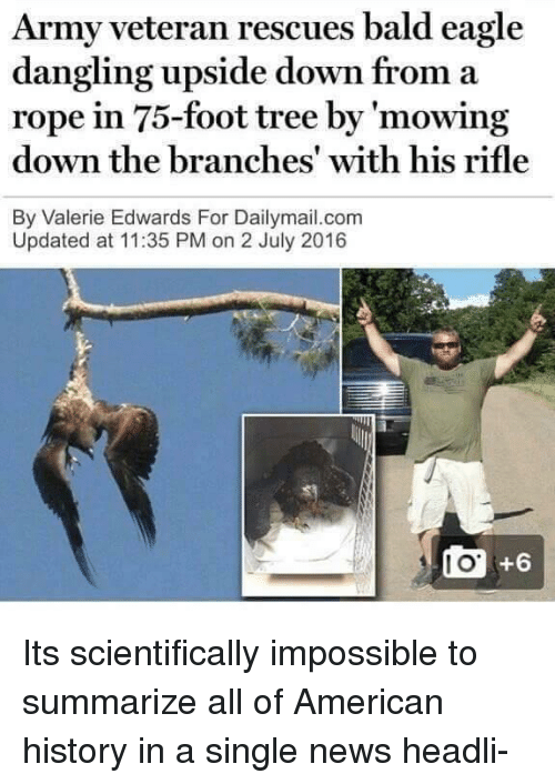 I O: Army veteran rescues bald eagle  dangling upside down from a  rope in 75-foot tree by 'mowing  down the branches' with his rifle  By Valerie Edwards For Dailymail.com  Updated at 11:35 PM on 2 July 2016  I O  +6 Its scientifically impossible to summarize all of American history in a single news headli-