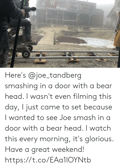 Every Morning: ARSSONS Here's @joe_tandberg smashing in a door with a bear head. I wasn't even filming this day, I just came to set because I wanted to see Joe smash in a door with a bear head. I watch this every morning, it's glorious. Have a great weekend! https://t.co/EAa1lOYNtb