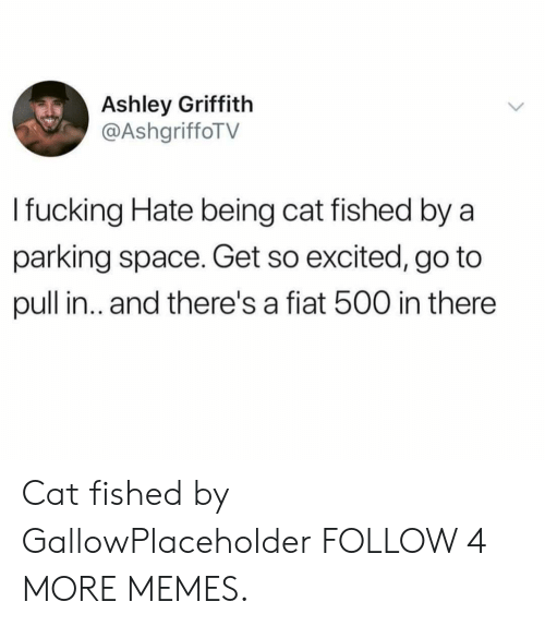 Fiat: Ashley Griffith  @AshgriffoTV  I fucking Hate being cat fished by a  parking space. Get so excited, go to  pull in.. and there's a fiat 500 in there Cat fished by GallowPlaceholder FOLLOW 4 MORE MEMES.