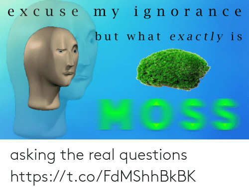 real: asking the real questions https://t.co/FdMShhBkBK