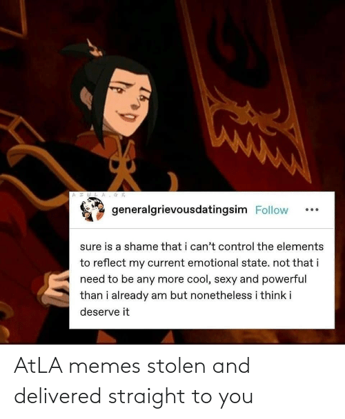 To You: AtLA memes stolen and delivered straight to you