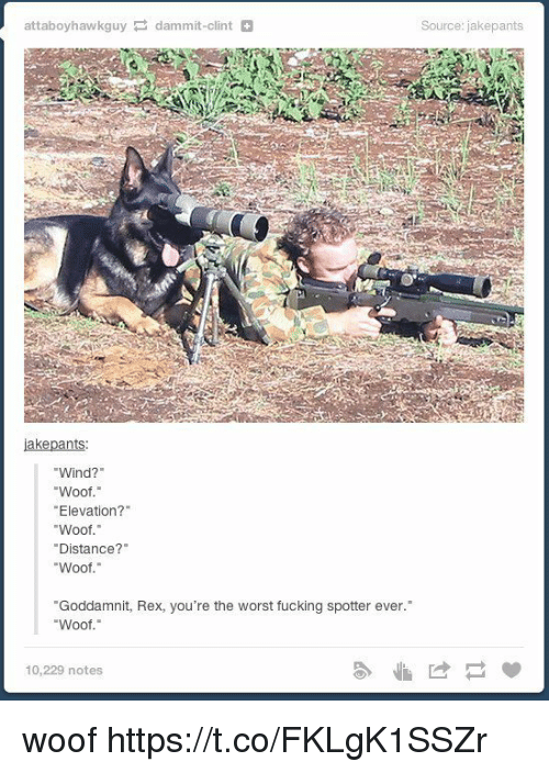 """woofing: attaboyhawkguy dammit-clint  iakepants  Wind?""""  Woof.""""  """"Elevation?""""  Woof.""""  Distance?  Woof  """"Goddamnit, Rex, you're the worst fucking spotter ever.  Woof.""""  10,229 notes  Source: jakepants woof https://t.co/FKLgK1SSZr"""