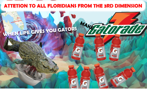 Life, Memes, and All: ATTETION TO ALL FLORIDIANS FROM THE 3RD DIMENSION  Co  HEN LIFE GIVES YOU GATORs  surreal-memes.tu