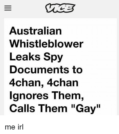 """4chan, Irl, and Australian: Australian  Whistleblower  Leaks Spy  Documents to  4chan, 4chan  gnores T hem,  Calls Them """"Gay"""" me irl"""