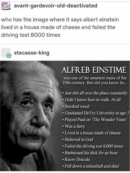 Albert: avant-gardevoir-old-deactivated  who has the image where it says albert einstein  lived in a house made of cheese and failed the  driving test 8000 times  stecasse-king  ALFREB EINSTIME  was one of the smartest mans of the  19th century. But did you know he...  Just shit all over the place constantly  Didn't know how to walk. At all  Smoked weed  .Graduated De Vry University at age 3  Played Paul on The Wonder Years'  Was a furry  Lived in a house made of cheese  Believed in God  Failed the driving test 8,000 times  Barbecued his dick for an hour  Knew Dracula  Fell down a mineshaft and died