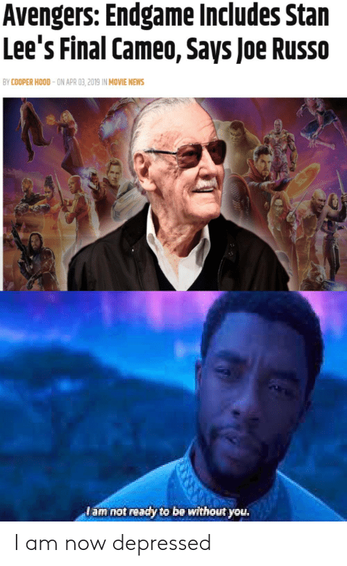 News, Stan, and Avengers: Avengers: Endgame Includes Stan  Lee's Final Cameo, Says Joe Russo  BY COOPER HOOD-ON APR 03,2019 IN MOVIE NEWS  am not ready to be without you I am now depressed