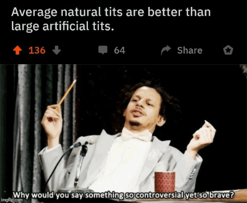share: Average natural tits are better than  large artificial tits.  會 136  Share  64  Why would you say something so controversial yet so brave?  imgflip.com