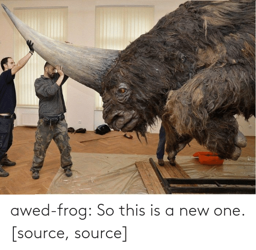 Giant: awed-frog:  So this is a new one.[source, source]