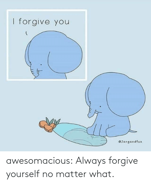 matter: awesomacious:  Always forgive yourself no matter what.