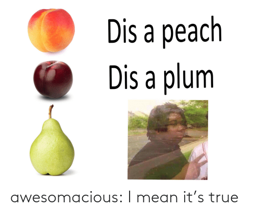 Its: awesomacious:  I mean it's true
