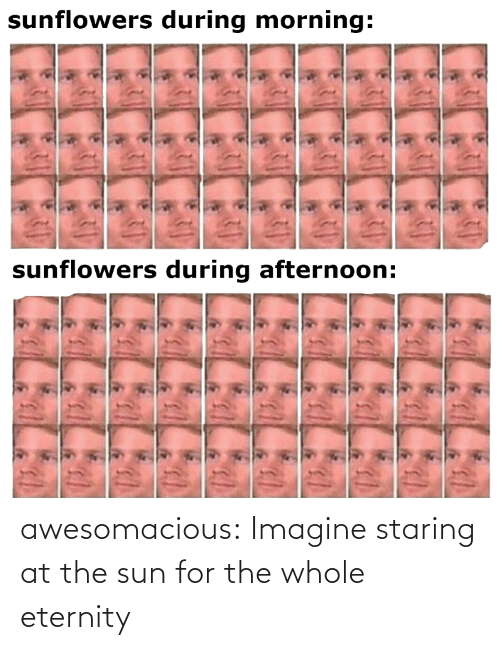 The: awesomacious:  Imagine staring at the sun for the whole eternity