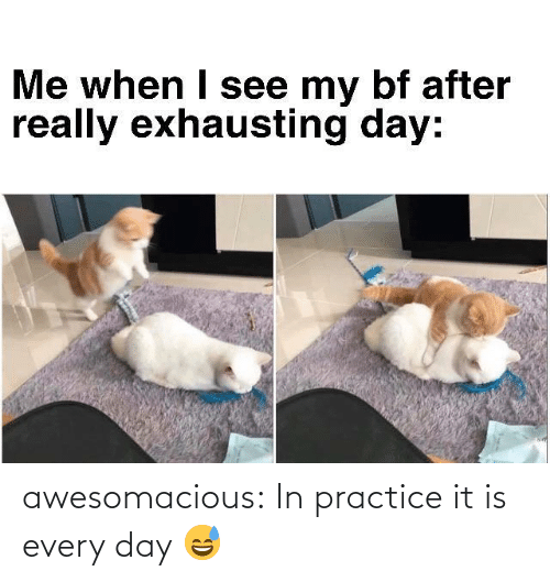 Practice: awesomacious:  In practice it is every day 😅