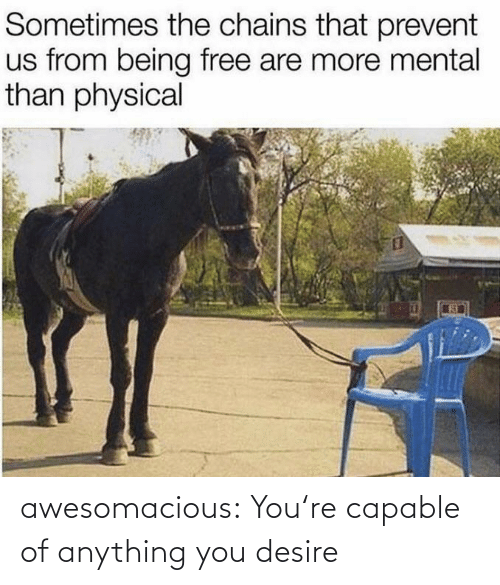 youre: awesomacious:  You're capable of anything you desire