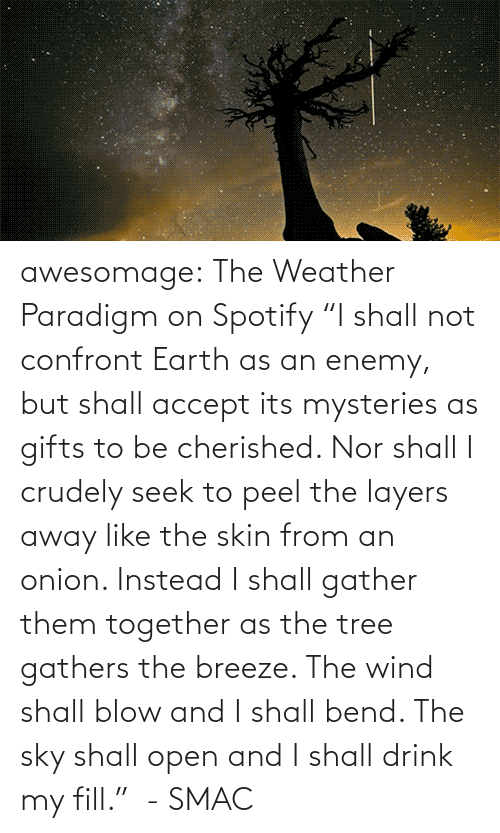 "Seek: awesomage:   The Weather Paradigm on Spotify   ""I shall not confront Earth as an enemy, but shall accept its mysteries as gifts to be cherished. Nor shall I crudely seek to peel the layers away like the skin from an onion. Instead I shall gather them together as the tree gathers the breeze. The wind shall blow and I shall bend. The sky shall open and I shall drink my fill.""  - SMAC"