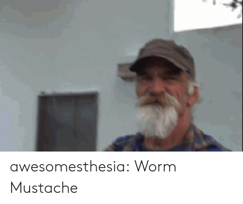 mustache: awesomesthesia:  Worm Mustache