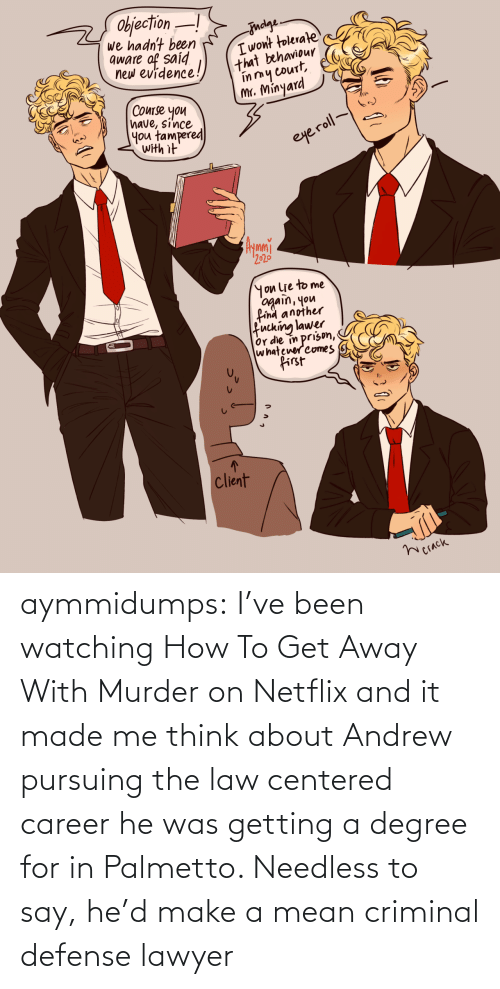 Lawyer: aymmidumps: I've been watching How To Get Away With Murder on Netflix and it made me  think about Andrew pursuing the law centered career he was getting a  degree for in Palmetto. Needless to say, he'd make a mean criminal  defense lawyer
