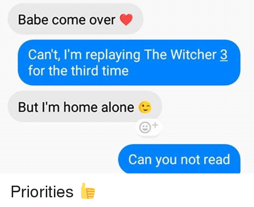 Witchers: Babe come over  Can't, I'm replaying The Witcher 3  for the third time  But I'm home alone  Can you not read Priorities 👍