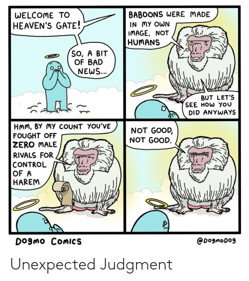 News: BABOONS WERE MADE  IN MY OWN  IMAGE, NOT  HUMANS  WELCOME TO  HEAVEN'S GATE!  So, A BIT  OF BAD  NEWS...  BUT LET'S  SEE HOW YOU  DID ANYWAYS  HMM, BY MY COUNT YOU'VE  NOT GOOD,  NOT GOOD.  FOUGHT OFF  ZERO MALE  RIVALS FOR  CONTROL  OF A  HAREM  DOgmo COMICS  @DogmoDo9 Unexpected Judgment