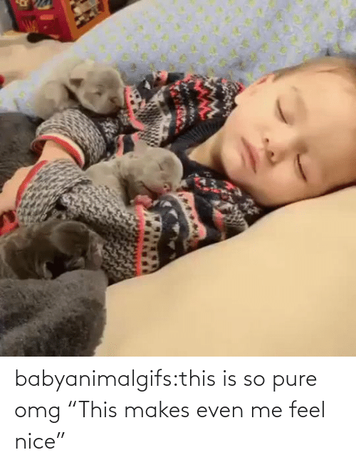 """pure: babyanimalgifs:this is so pure omg   """"This makes even me feel nice"""""""