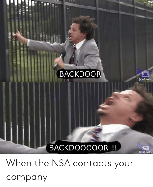Nsa, Company, and Contacts: BACKDOOR  adult swlim  BACKDOOOOOR!!! When the NSA contacts your company