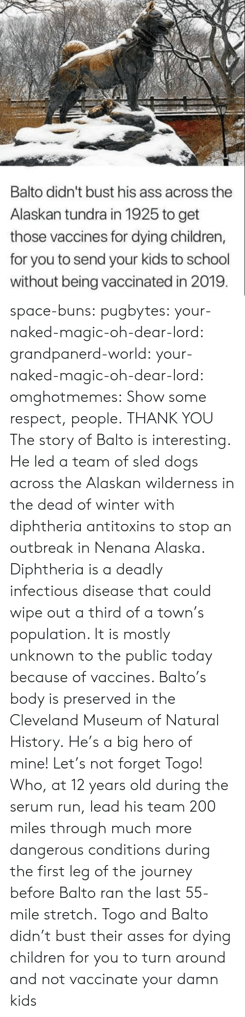 Ass, Bailey Jay, and Children: Balto didn't bust his ass across the  Alaskan tundra in 1925 to get  those vaccines for dying children,  for you to send your kids to school  without being vaccinated in 2019 space-buns: pugbytes:   your-naked-magic-oh-dear-lord:  grandpanerd-world:   your-naked-magic-oh-dear-lord:  omghotmemes: Show some respect, people.  THANK YOU   The story of Balto is interesting. He led a team of sled dogs across the Alaskan wilderness in the dead of winter with diphtheria antitoxins to stop an outbreak in Nenana Alaska. Diphtheria is a deadly infectious disease that could wipe out a third of a town's population. It is mostly unknown to the public today because of vaccines. Balto's body is preserved in the Cleveland Museum of Natural History.   He's a big hero of mine!   Let's not forget Togo! Who, at 12 years old during the serum run, lead his team 200 miles through much more dangerous conditions during the first leg of the journey before Balto ran the last 55-mile stretch.   Togo and Balto didn't bust their asses for dying children for you to turn around and not vaccinate your damn kids