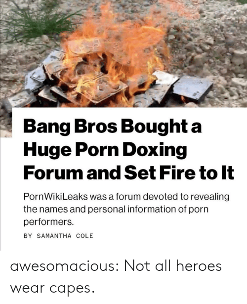 revealing: Bang Bros Bought a  Huge Porn Doxing  Forum and Set Fire to It  PornWikiLeaks was a forum devoted to revealing  the names and personal information of porn  performers  BY SAMANTHA COLE awesomacious:  Not all heroes wear capes.