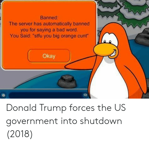 "Donald Trump: Banned  The server has automatically banned  you for saying a bad word.  You Said: ""stfu you big orange cunt""  Okay Donald Trump forces the US government into shutdown (2018)"