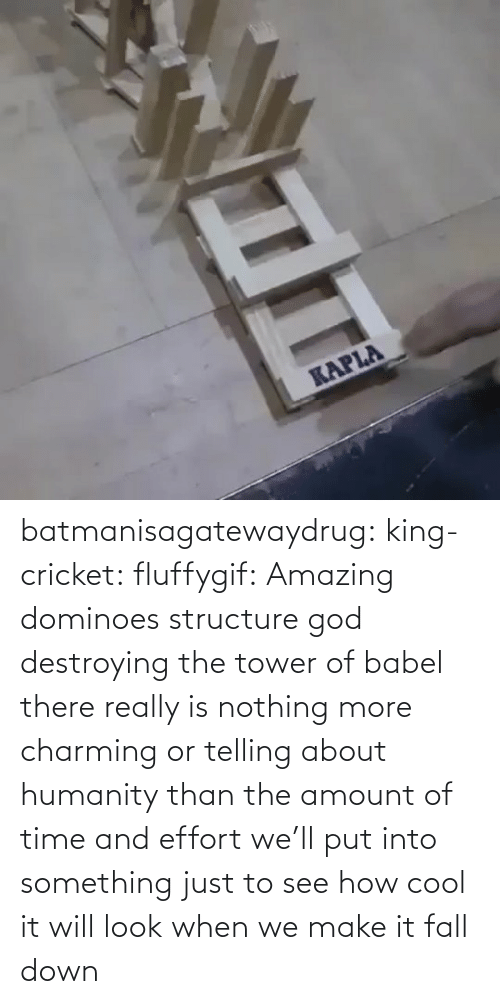tower: batmanisagatewaydrug: king-cricket:  fluffygif:  Amazing dominoes structure    god destroying the tower of babel  there really is nothing more charming or telling about humanity than the amount of time and effort we'll put into something just to see how cool it will look when we make it fall down