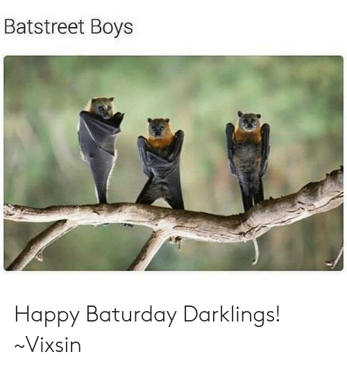 Memes, Happy, and Boys: Batstreet Boys Happy Baturday Darklings!  ~Vixsin